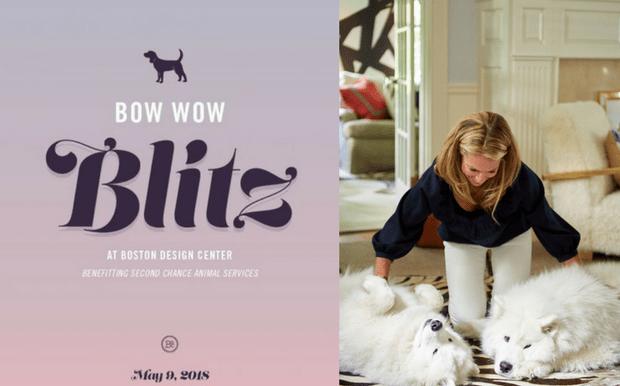bow wow blitz